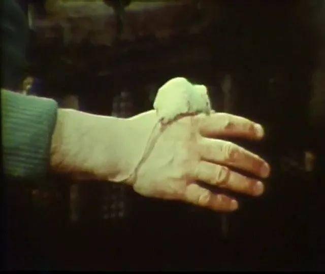 鼠辈乌托邦的现代启示录